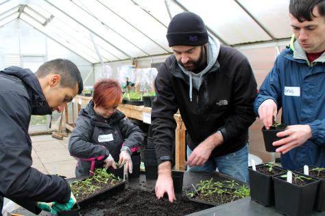 Volunteers at The Hidden Gardens