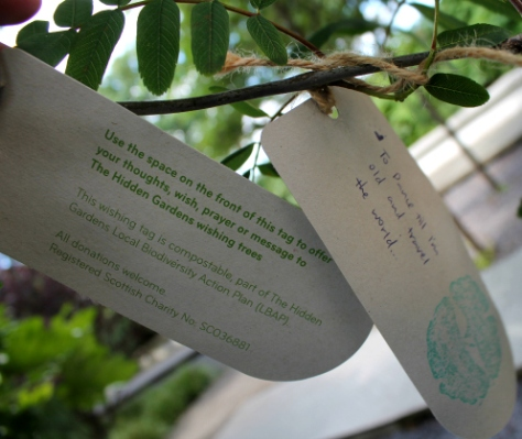 A dancer's wish on our wishing trees