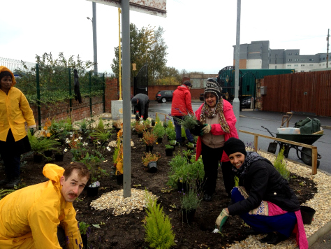 Volunteers hard at work planting up the border